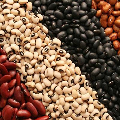 beans inicio